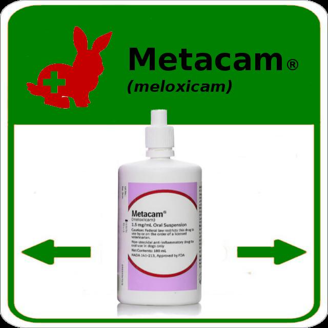 Metacam chien